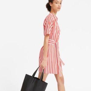 Everlane Striped S/S Shirt Dress